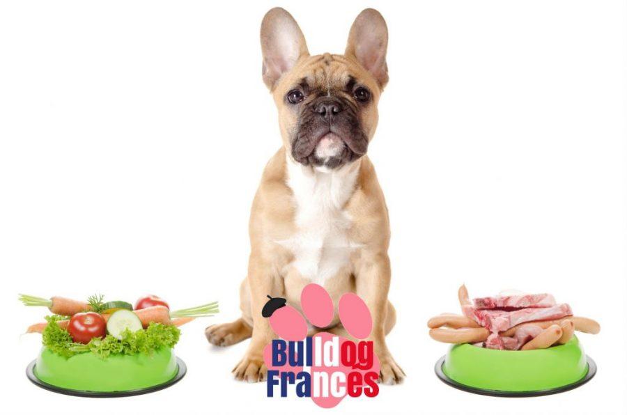 alimento para el bulldog francés