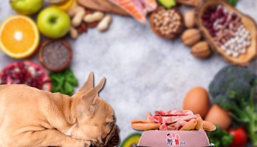 dieta barf para perros bulldog frances cruda